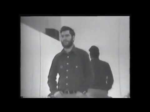 Performer/Audience/Mirror by Dan Graham (1975)