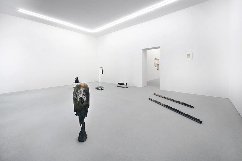 rolando anselmi gallery