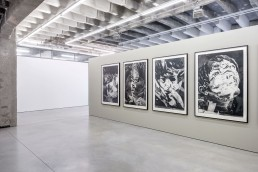 Matt Saunders, Niels Borch Jensen Gallery and Editions, Berlin, 2017-18