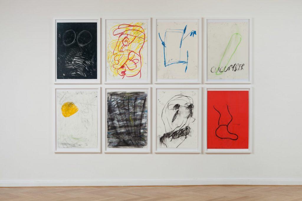 Cameron Platter artworks at Gnyp Gallery
