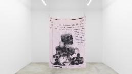 Tony Matelli - Throw Blanket