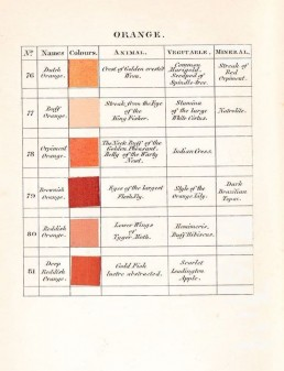 A page from Abraham Gottlob Werner's Nomenclature of Colour (1814)