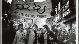 Stonewall Riots Diana Davies