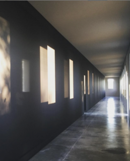 Robert Irwin, light art