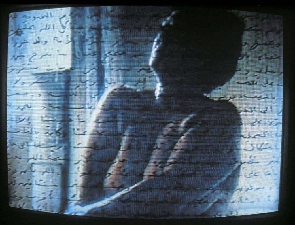 Mona Hatoum, Measures of Distance, 1988
