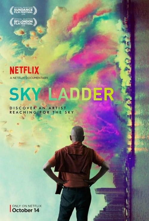 Sky Ladder: The Art of Cai Guo-Qiang  (2016).