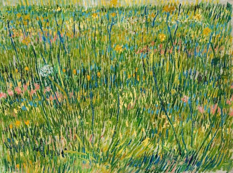 Van Gogh Patch of Grass