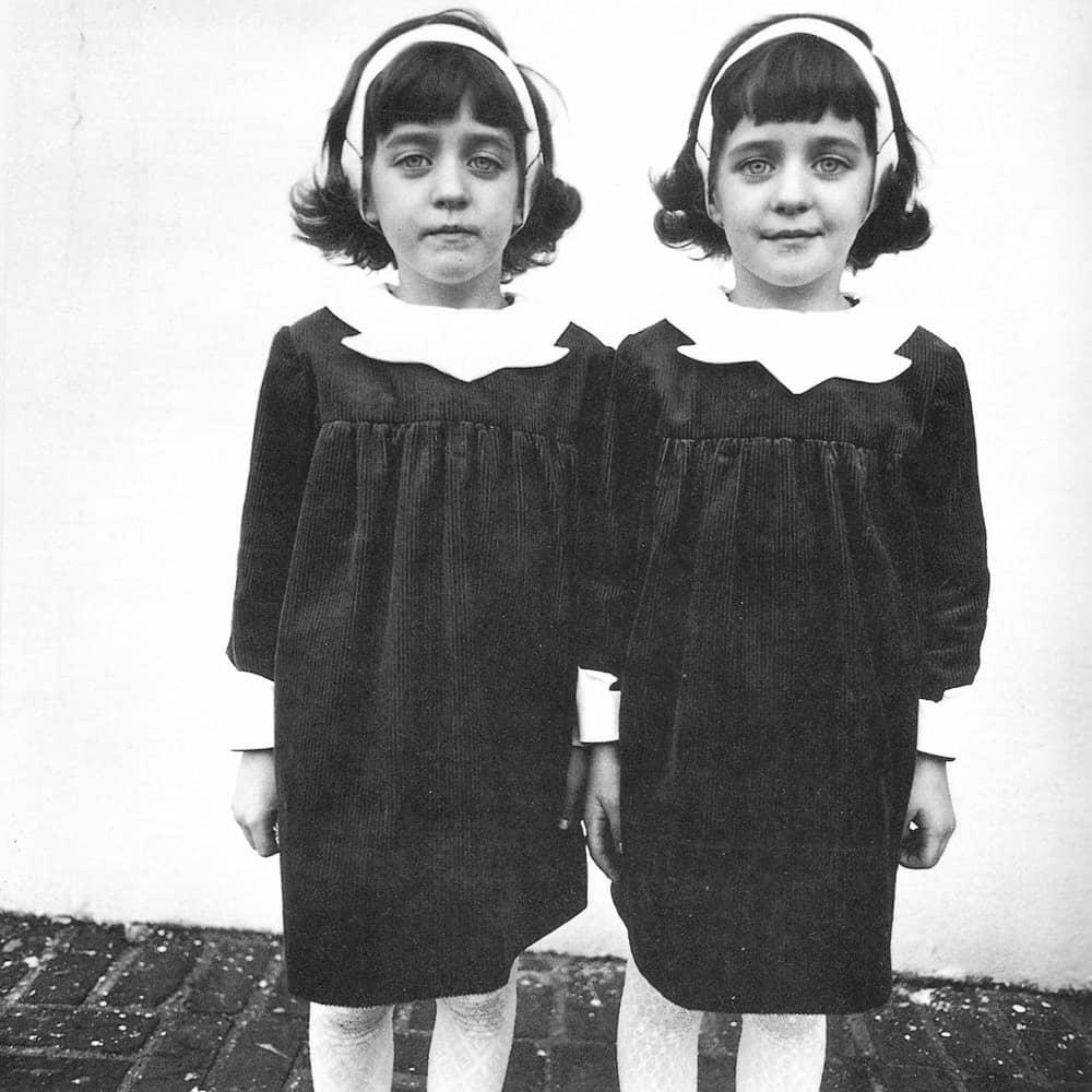 Diane Arbus Identical Twins