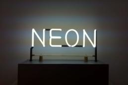 Joseph Kusuth - Neon - 1965