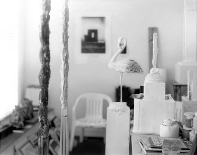 Sally Mann, Remembered Light, Untitled (Flamingo Profile), 2012