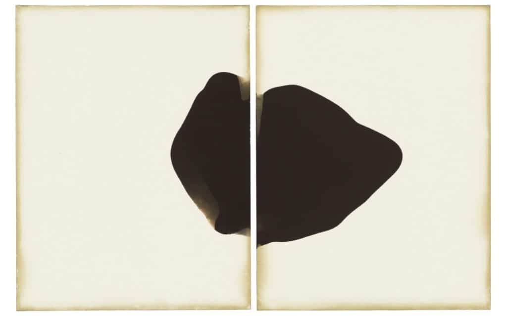 Allison Rositer - Haloid Platina - cameraless photography