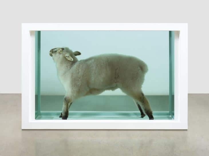 Damien Hirst, Away from the Flock. Lamb and formaldehyde solution.
