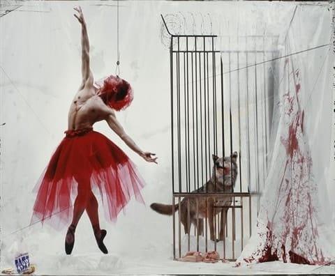 Gérard Rancinan, Les contes de Perrault. Le petit chaperon rouge (Emmanuel Tibault), 2003.