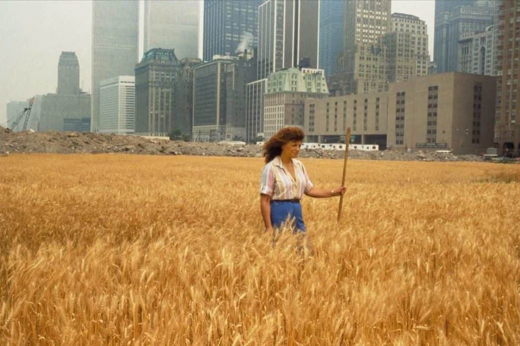 Agnes Denes, Wheatfield – A Confrontation, 1982