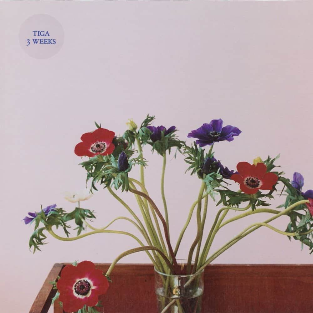 """Single for Tiga's """"3 Weeks' featuring photograph of Wolfgang Tillmans from his 2003 series """"Anemone II""""."""